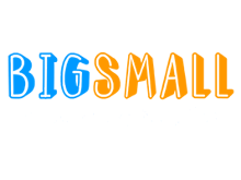 Bigsmall coupon